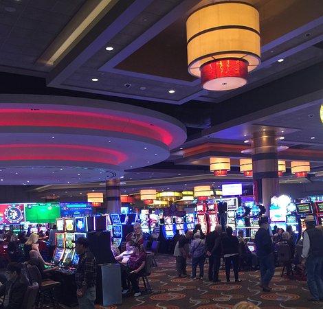 Casino web dollar - 748124