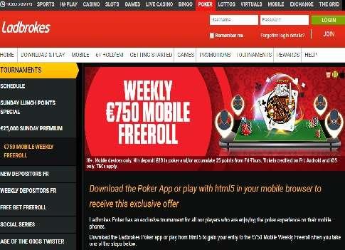 Online Casino - 833012